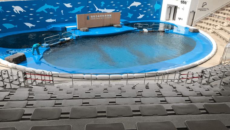イルカのスタジアム会場は屋外だが屋根もあり、休憩所も兼ねている
