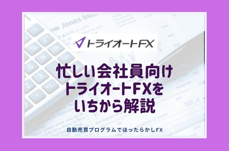 トライオートFXとは?忙しいサラリーマン向け自動売買【運用開始まで徹底解説】